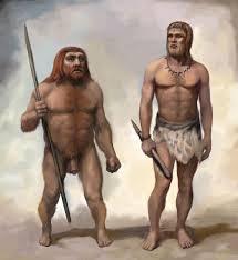 Uno studio rileva che anche i Neanderthal si nutrivano di verdure