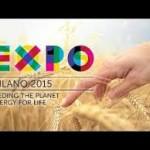 Expo un successo inaspettato in questi primi giorni