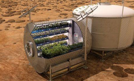 Coltivare patate su Marte, il progetto della NASA