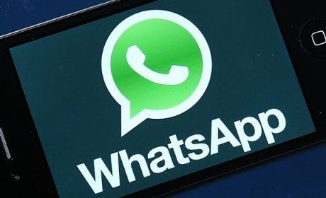 WhatsApp, le novità del 2016