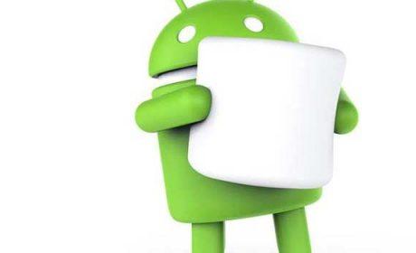 Google alla UE: Android non danneggia la concorrenza